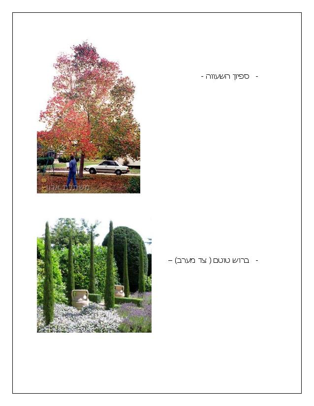 Document page 010 - דוגמא להצעת מחיר עבור עיצוב גינה