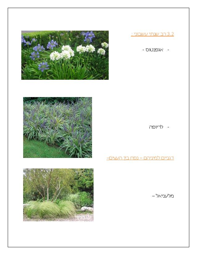 Document page 012 - דוגמא להצעת מחיר עבור עיצוב גינה