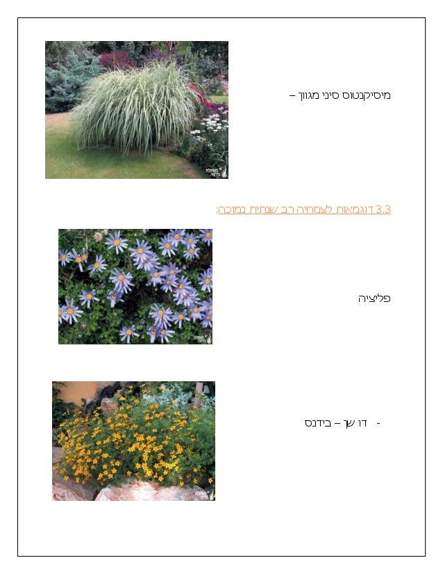 Document page 013 - דוגמא להצעת מחיר עבור עיצוב גינה