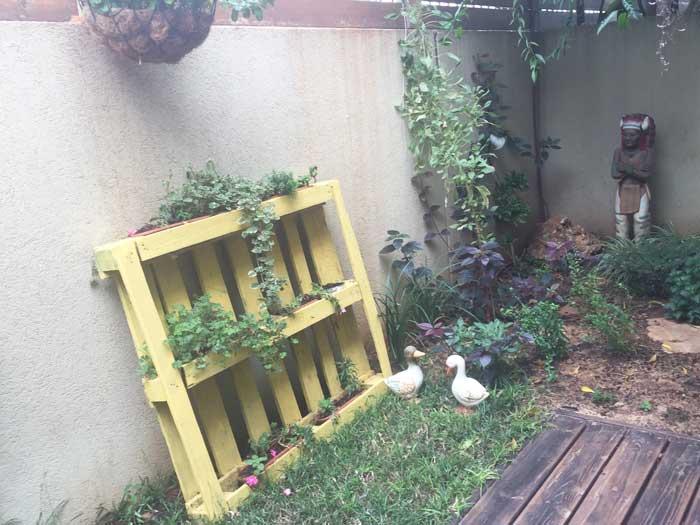 עיצוב גינה12 - עיצוב גינות - שלושה פריטים לגינה שלא חשבתם עליהם