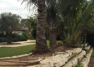 עיצוב גינה יוקרתית 300x214 - פרויקטים אחרונים - עיצוב גינות אמנות הגינה הקסומה