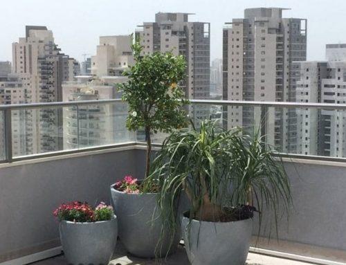 עיצוב ותכנון גינות גג