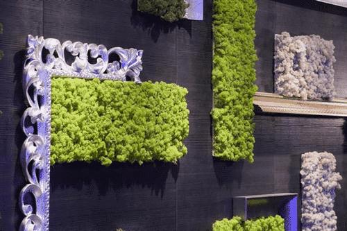 גינות עם moss2 - עיצוב קירות ירוקים ב-MOSS