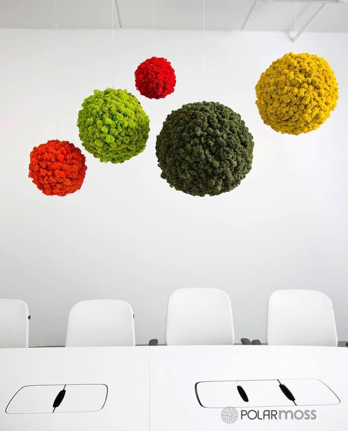 עיצוב גינות בשילוב קירות ירוקים