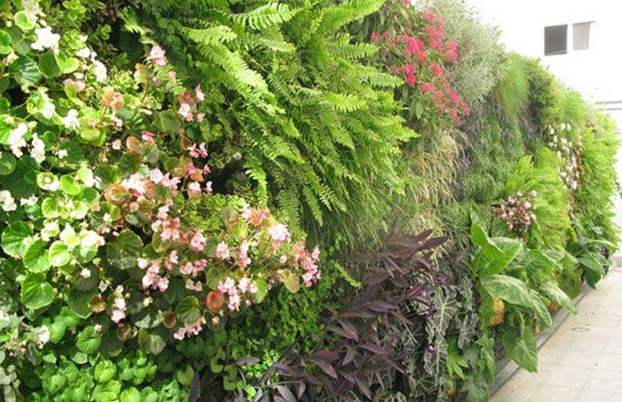 קירות מעוצבים בגינה