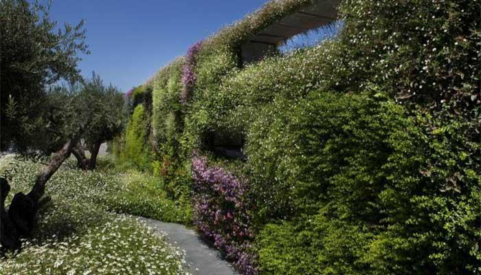 מצגת גרין וול מעודכנת 1 - קירות ירוקים טבעיים