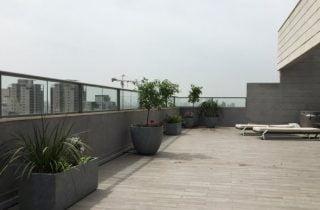 מרפסת תמונת שער 320x210 - הקמת גינה על גגות ומרפסות