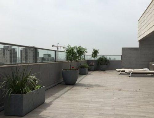 הקמת גינה על גגות ומרפסות