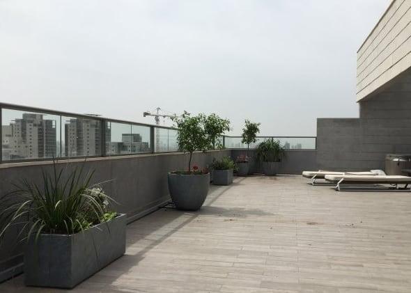 גינת מרפסת תמונת שער - הקמת גינה על גגות ומרפסות