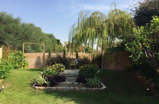 בוכייה בגינה של שיינר 320x210 - עצי נוי בהקמת הגינה הפרטית