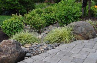 ניקוז תמונת שער 320x210 - הקמת תשתית לגינה – מה חשוב לדעת?