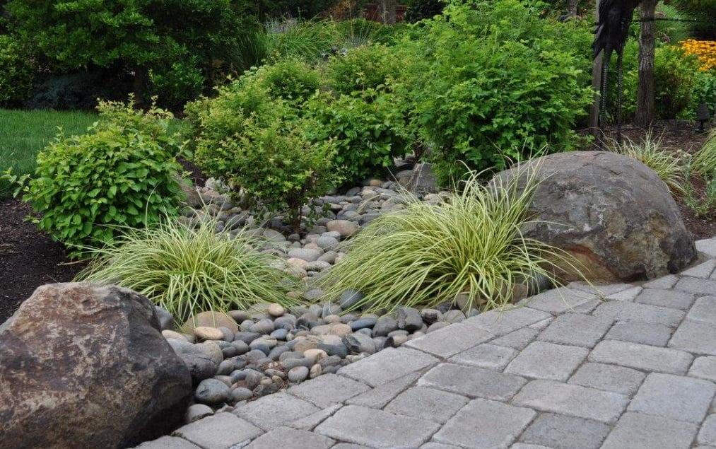 ניקוז תמונת שער - הקמת תשתית לגינה – מה חשוב לדעת?