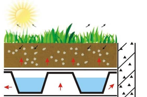 תשתיות 2 - הקמת תשתית לגינה – מה חשוב לדעת?