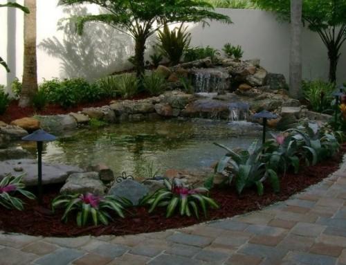 סוגי בריכות נוי לשדרוג הגינה