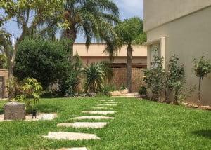 עיצוב גינות 3 3 300x214 - פרויקטים אחרונים - עיצוב גינות אמנות הגינה הקסומה