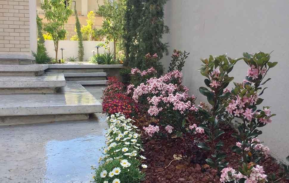 נוף וגינה יוקרתית בפרדסיה 10 - פרויקטים אחרונים - עיצוב גינות אמנות הגינה הקסומה