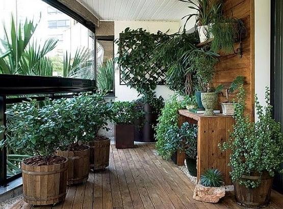 טיפוח הגינה בעונת החורף