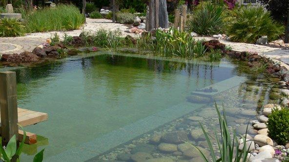 שחיה אקולוגית 4 - בריכות טבעיות משולבות