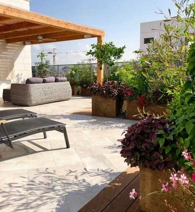 עיצוב גינות גג ומרפסת