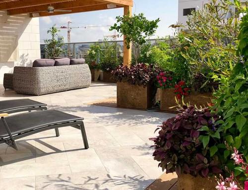 עיצוב גינות גג ומרפסת – דגשים והמלצות
