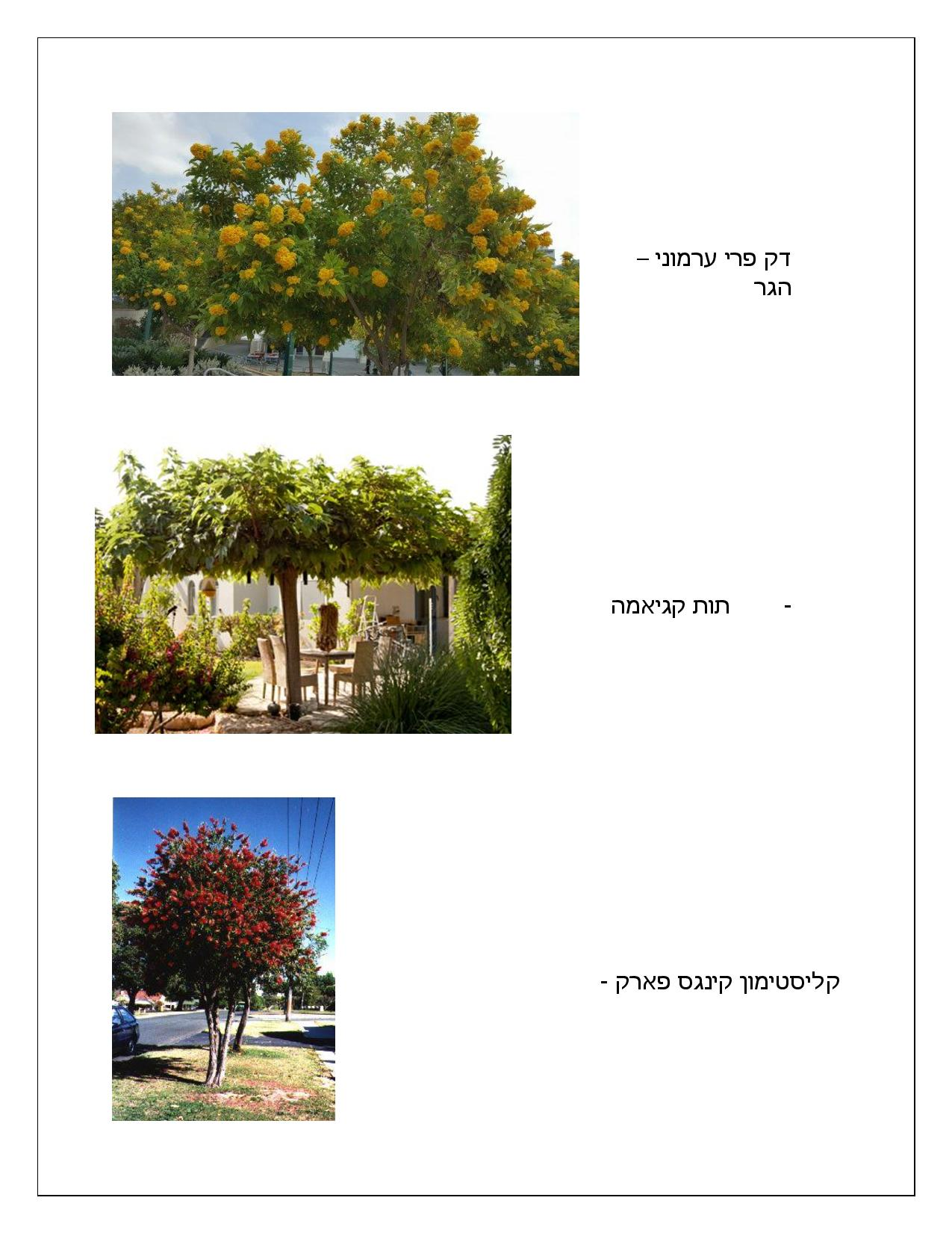 Document page 009 - דוגמא להצעת מחיר עבור עיצוב גינה