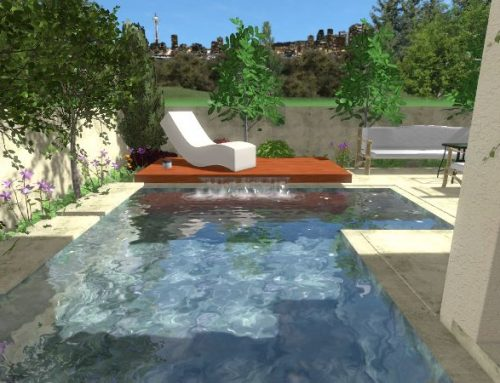 הדמיית פרויקט יוקרתי של עיצוב והקמת גינה עם בריכה בהרצליה