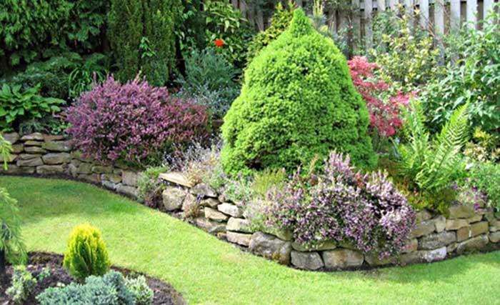 צמחיה - גינה אנגלית - שופעת וייחודית