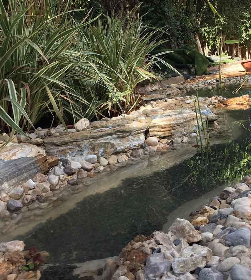 בגינה פרטית - עיצוב גינה עם חלוקי נחל