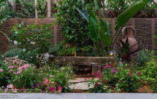 הגינה הפראית