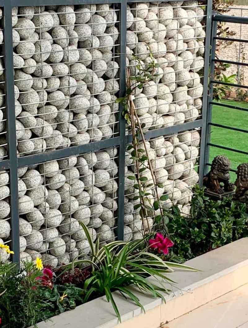 את הפרקטיקה לגינה הדליית פרחים מטפסים - מכניסים את הפרקטיקה לגינה: הדליית פרחים מטפסים